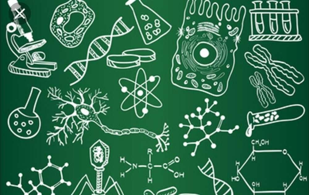 Репетитор по биологии для школьников.