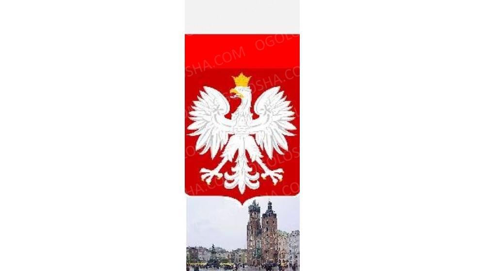 Допомога у вивчені польської мови