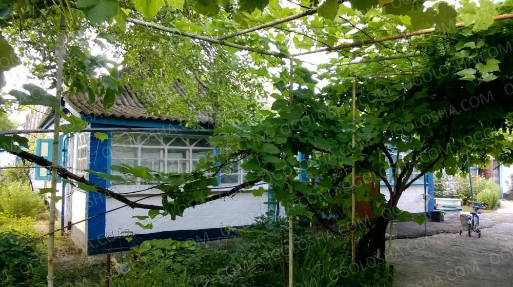 Продам дом+1га по трассе Киев-Харьков рядом Решетиловка Полтава обл c.Литвиновка