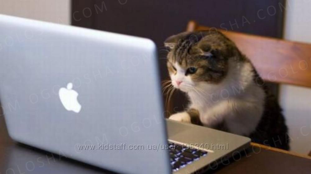 Робота в интернете (интернет маркетинг)