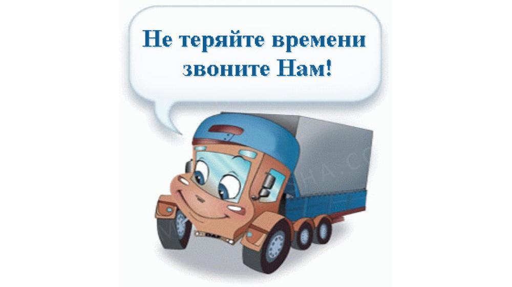 Водитель со своим грузовым автомобилем