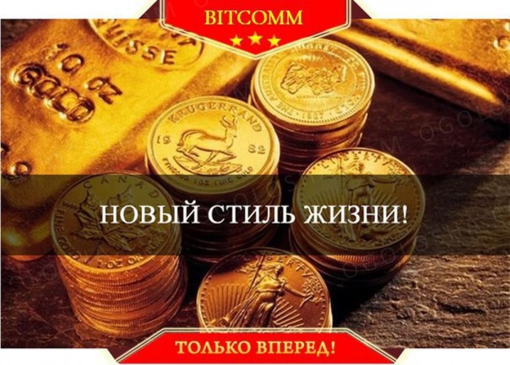 Работа в Bitcomm