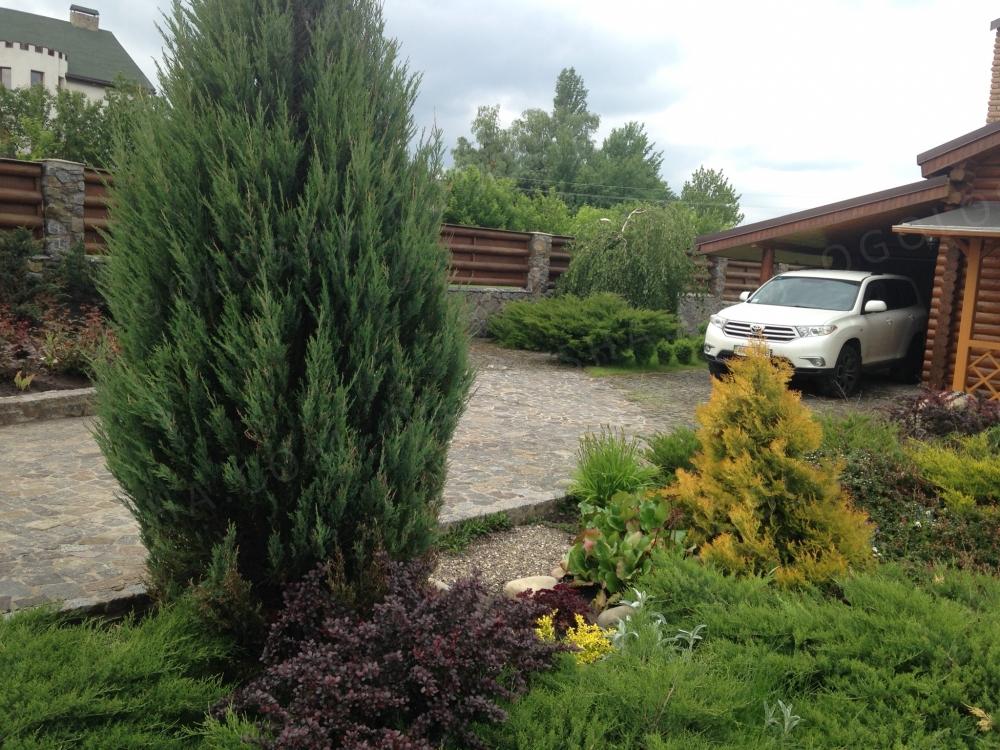 Продается дом (дача) в Белогородке