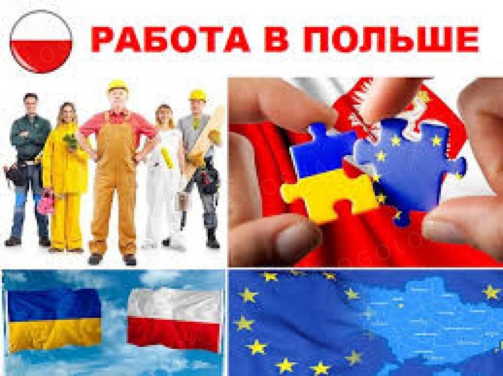 Польска робоча віза на пів року