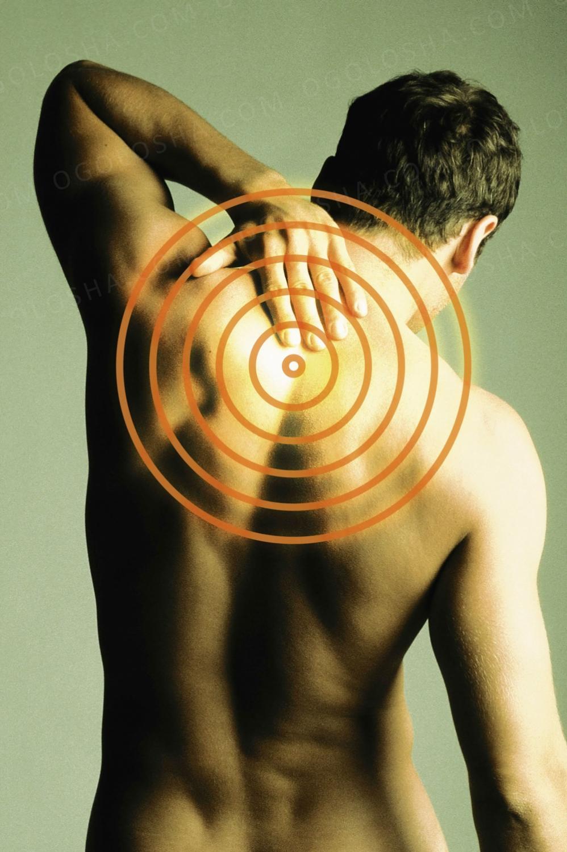 Качественный массаж спины.Киев 180грн