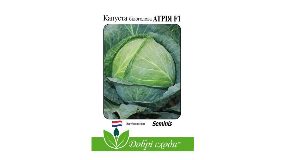 Семена капусты Атрия F1 от ТМ