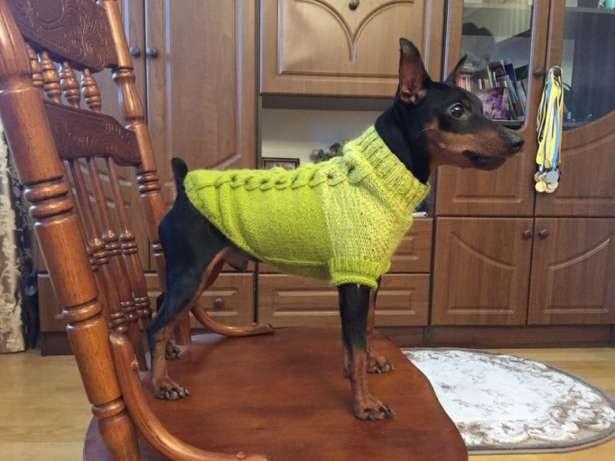 Одежда для собак/свитер для собаки