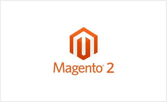 Junior to Middle Level Magento Developer and Support Specialist