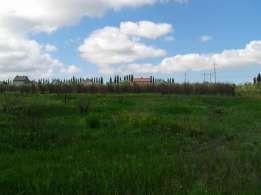 Продам участок под строительство дома в Александровке