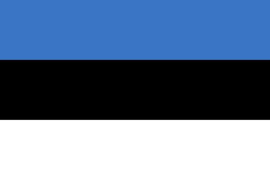 Флаг Эстонии / эстонский / Эстония 150*90 см, интернет-магазин флагов стран, организаций и штатов