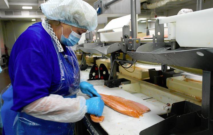 Работа в Польше консервация красной рыбы