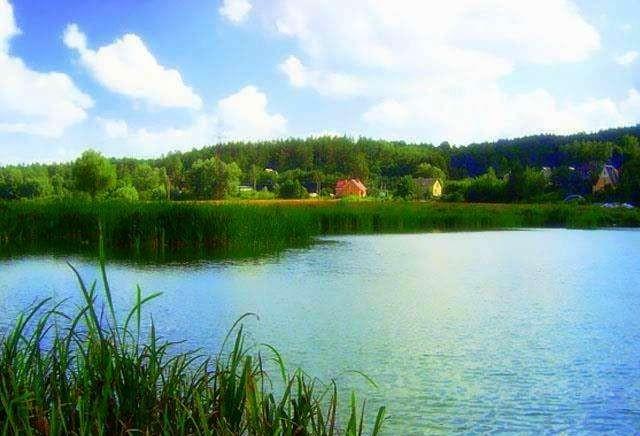 «Маленькая Швейцария» возле лесного озера. В 10 км от Киева.