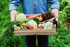 Сборщик овощей (Финляндия)