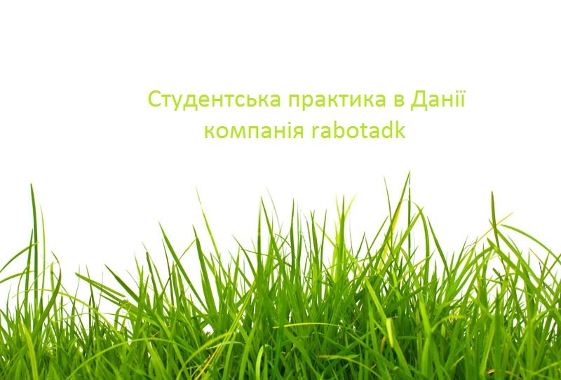 Практика від компанії rabotadk.