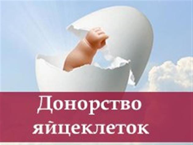 Сотрудничаем с желающими стать суррогатными мамами и донорами яйцеклет