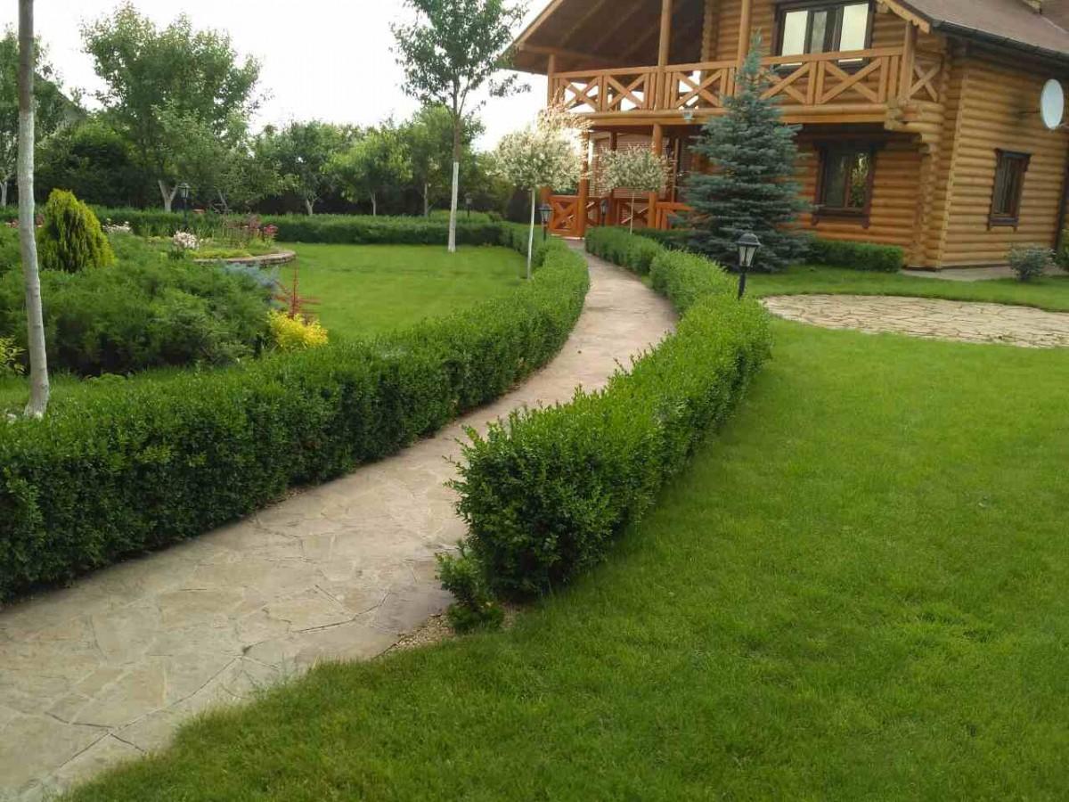 Ландшафтный дизайн, озеленение участка, автоматический полив