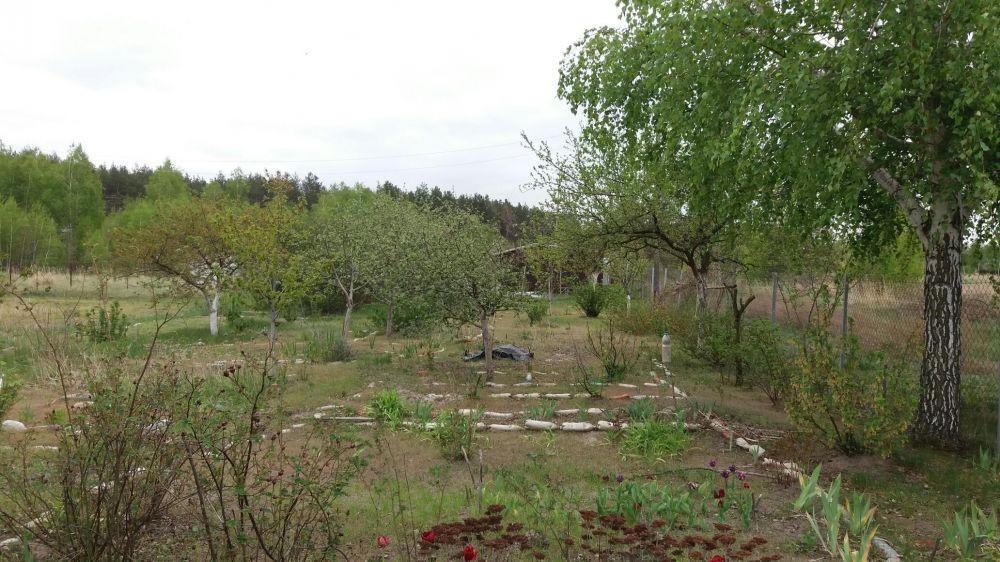 Дачный участок под Бородянкой