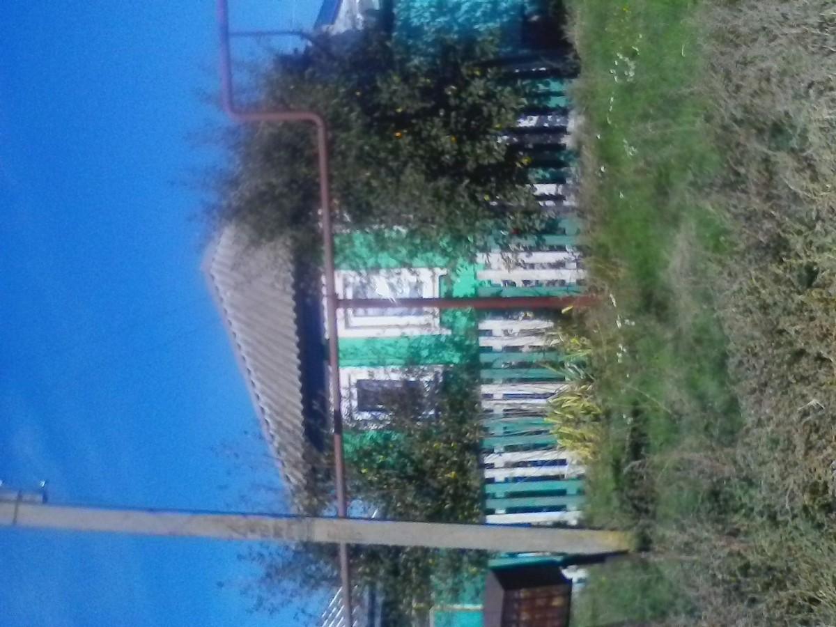 Продам дом в Воронежской области село Никольское 1