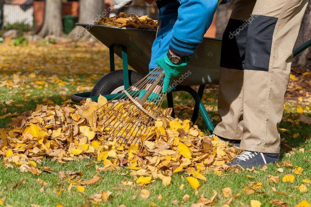 РіЗНОРОБОЧІ згрібати листя