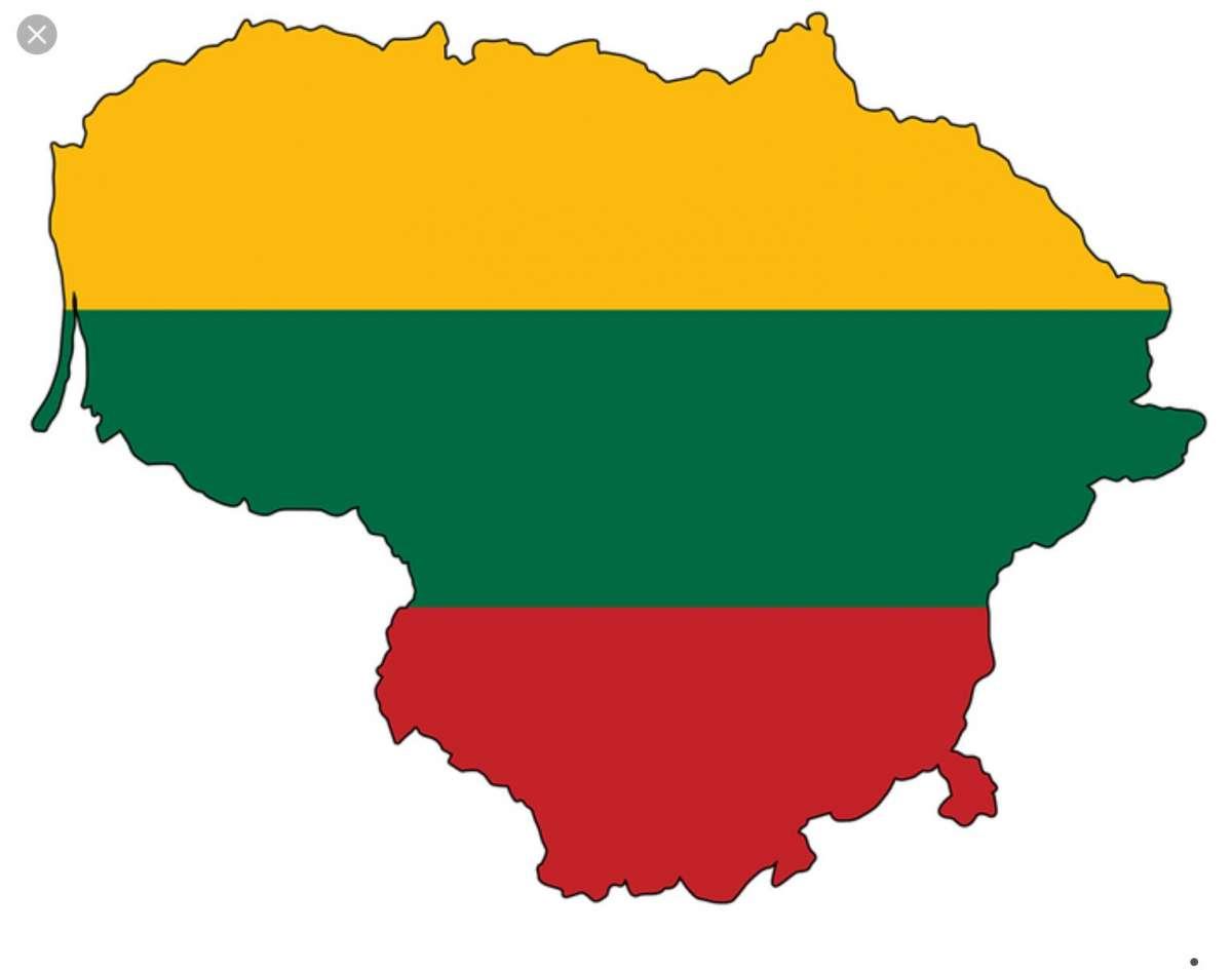 Туристическая и рабочая виза в Литву!