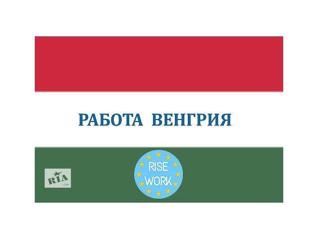 Работа для сантехников и электриков в Венгрии.