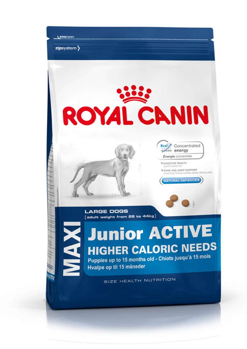 Royal Canin Maxi Junior Active (до 15 месяцев) 15кг