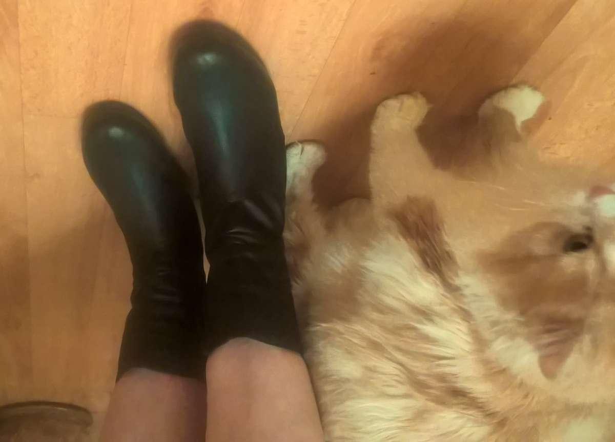 Новые женские ботинки недорого кожа