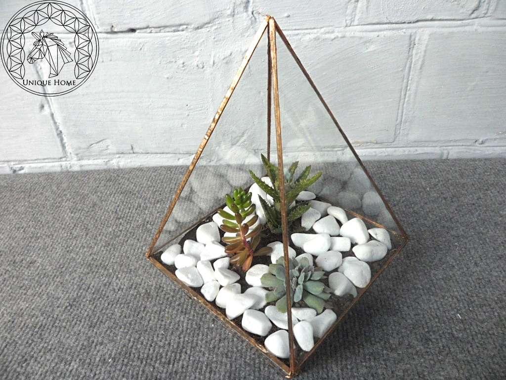 Флорариум Pyramid