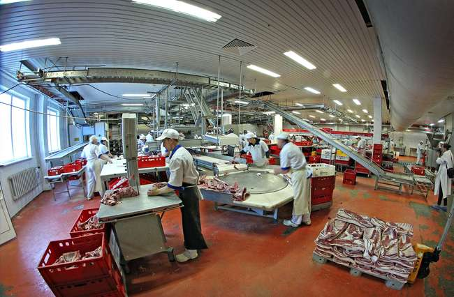 Робота в Чехии. Вакансия разноробочие на мясокомбинат. GoWork