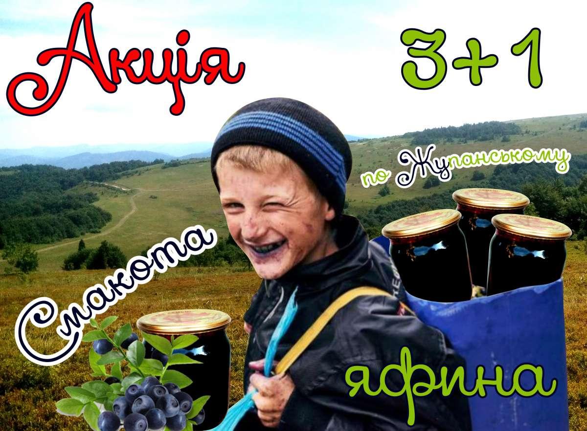 Чорниця Карпатська - це найкращий природній омолоджувач тіла та здоров