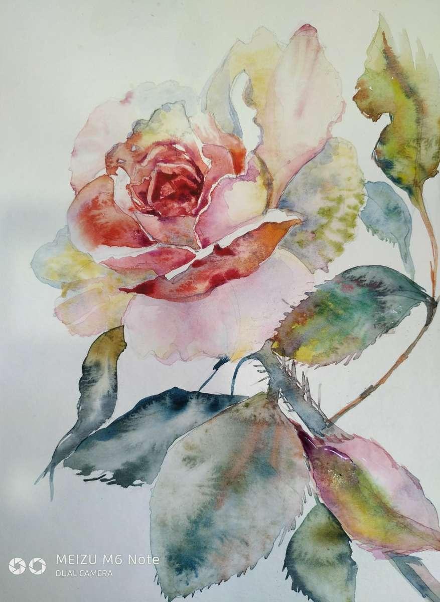 "Картина акварелью ""Роза"""
