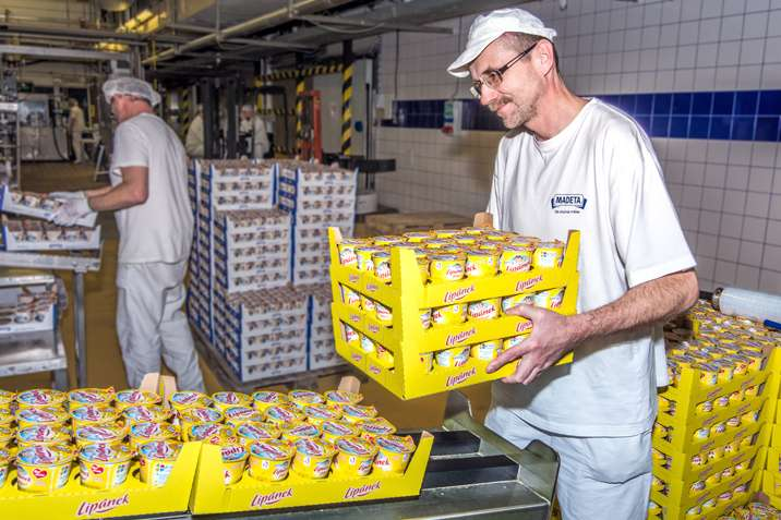 Упаковщики на сырной фабрике в Чехии. GoWork