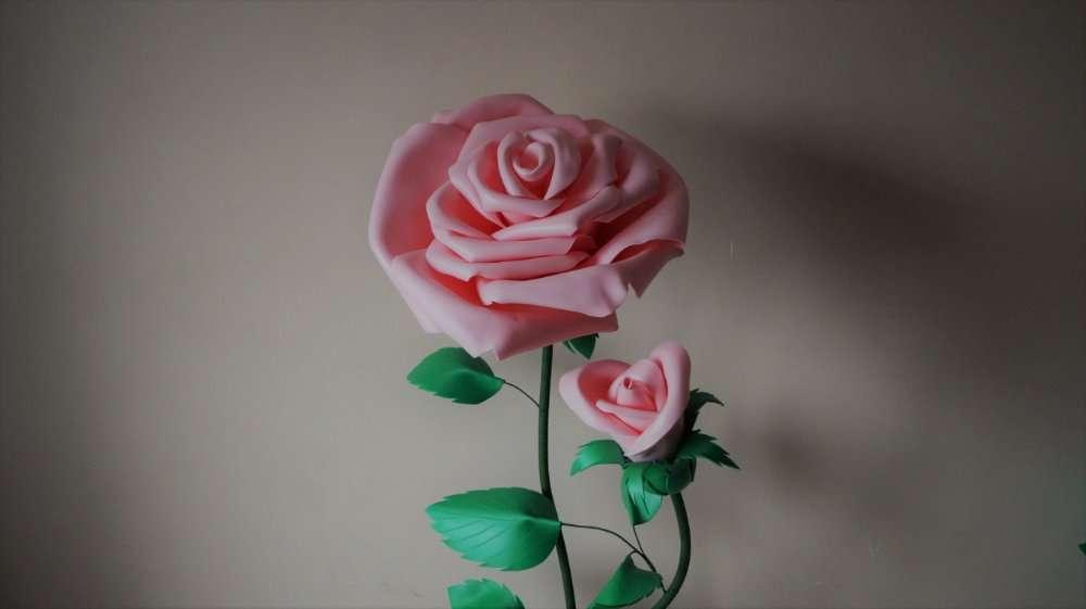 Розовая роза (ростовые цветы)