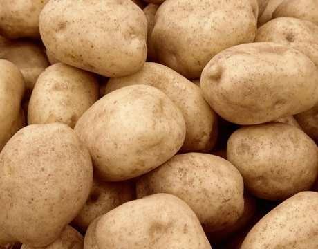 Предлагаю сортовой картофель ранних и среднеранних сортов