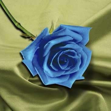 Алмазная вышивка/мозаика 30х30 Голубая роза, полное заполнение
