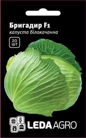 Семена Капуста белокочанная