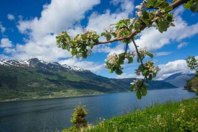 Попутчики в Норвегию . 26 мая-9 июня