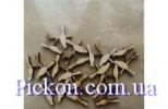 Скрап набор Птицы (28 мм 10 шт)