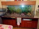 Продам аквариум 300литров,с тумбой,грунтом,помпой на 1000литров,нагрев... title=