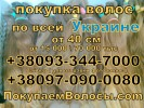 Скупка волос Одесса Продать волосы в Одессе