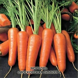 Насіння моркви «МОСКОВСЬКА ЗИМОВА» - 2г title=