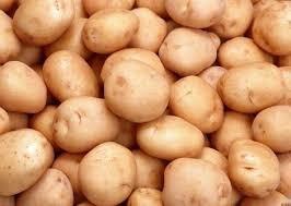 Продам картоплю title=