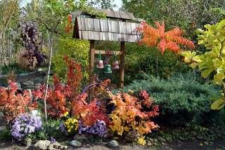 Продается загородный дом с ландшафтным садом. Срочно! title=