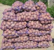Продам картоплю. Можлива доставка. title=