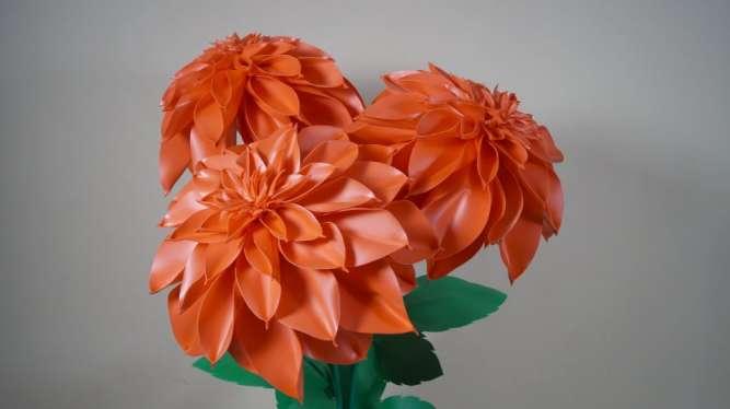 Красный георгин с изолона (ростовые цветы)