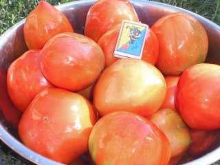 Семена овощей,цветов,арахиса,,фасоли,нута,пряных и лекарственных трав  title=