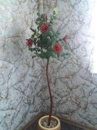 Деревья и цветы из бисера. title=