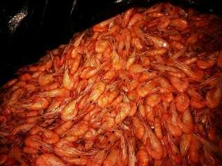 Креветка корм для аквариумных рыб title=