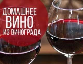 Продам вино title=