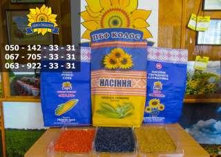 Насіння від виробника: соняшник, кукурудза, пшениця title=